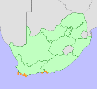Threatened Species Programme | SANBI Red List of South